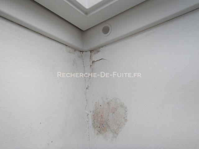 D gats for Humidite sur mur interieur