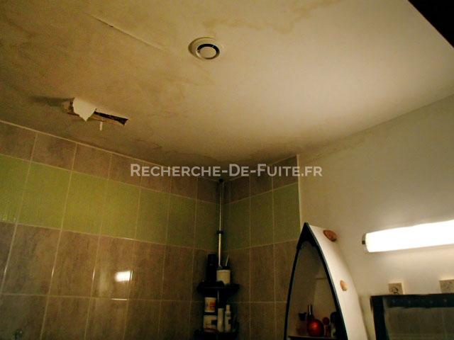 Moisissure plafond salle de bain good moisissures dans for Tache moisissure plafond salle bain