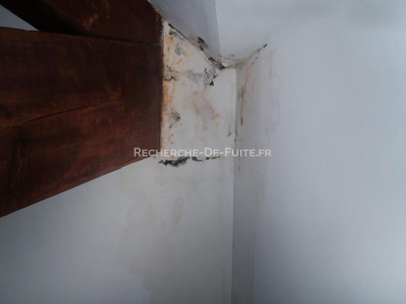 Enlever tache humidite plafond 28 images enlever tache for Enlever moisissure salle de bain